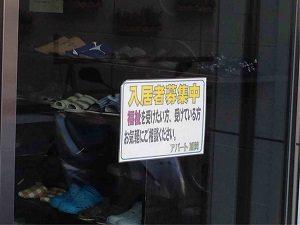 ビジネスホテル加賀には住人も