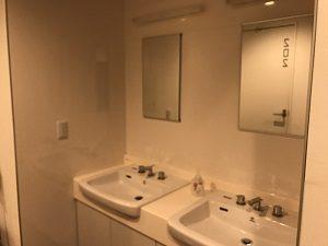 カンガルーホテルSIDE_Bの洗面台